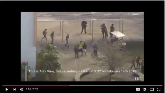 Alex View